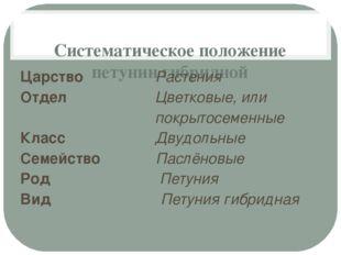 Систематическое положение петунии гибридной Царство Растения Отдел Цветковые