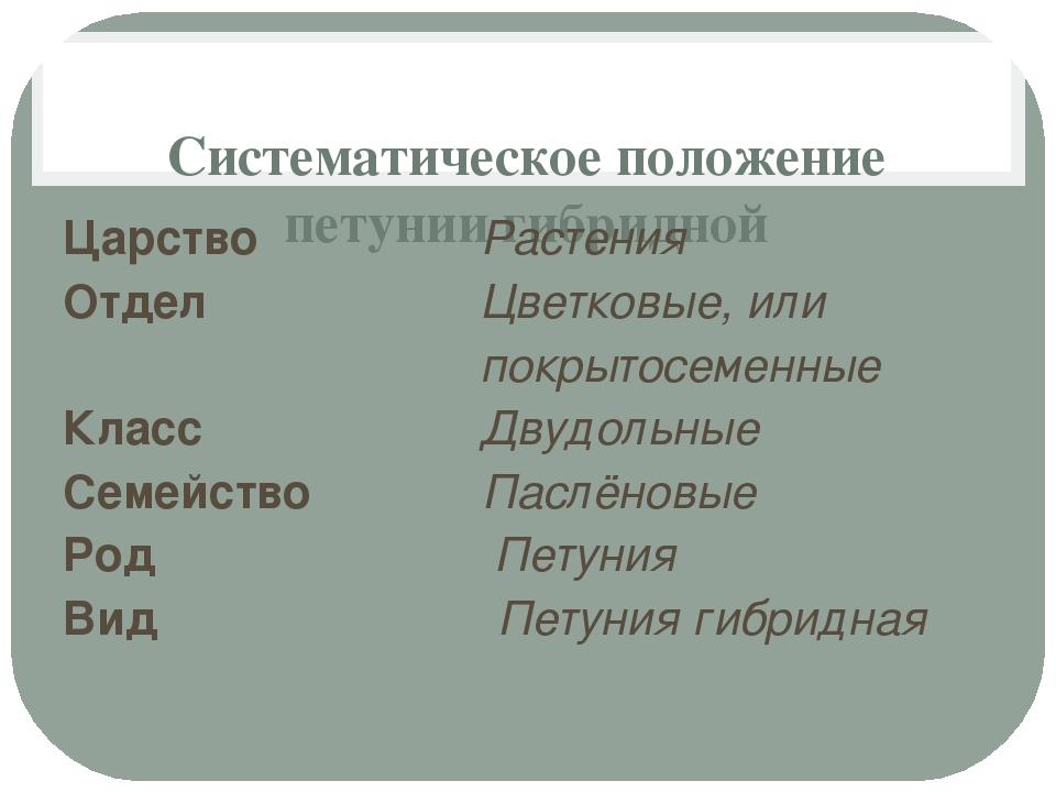 Систематическое положение петунии гибридной Царство Растения Отдел Цветковые...