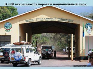 В 9.00 открываются ворота в национальный парк.