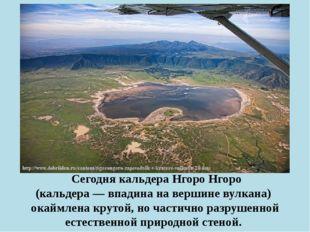 Сегодня кальдера Нгоро Нгоро (кальдера— впадина на вершине вулкана) окаймл