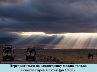 Передвигаться по заповеднику можно только в светлое время суток (до 18.00).