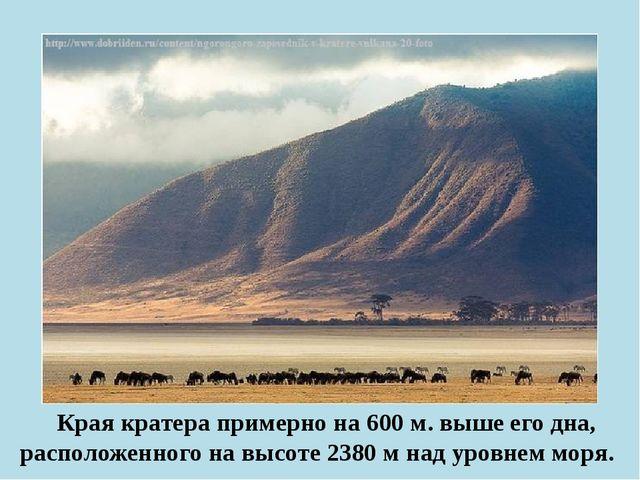 Края кратера примерно на 600 м. выше его дна, расположенного на высоте 2380...