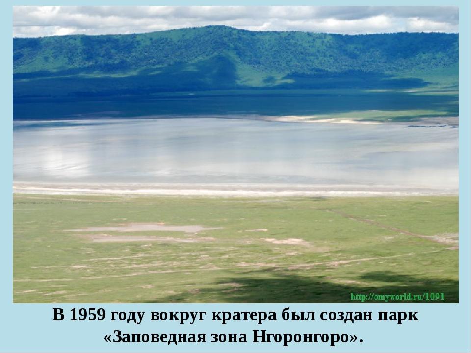 В 1959 году вокруг кратера был создан парк «Заповедная зона Нгоронгоро».