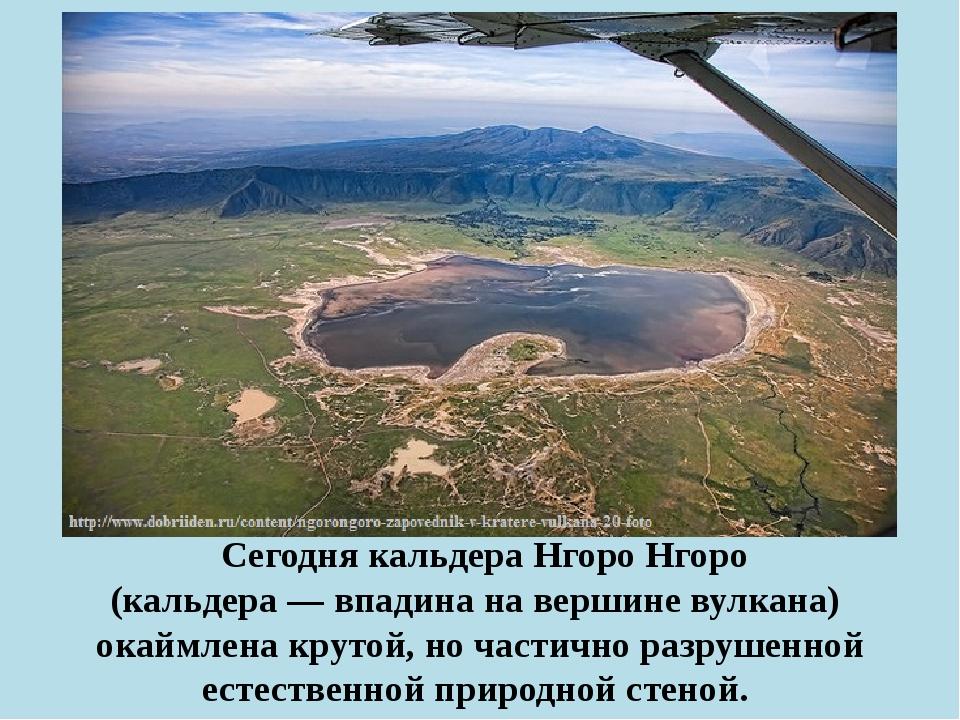 Сегодня кальдера Нгоро Нгоро (кальдера— впадина на вершине вулкана) окаймл...
