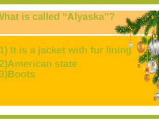 "What is called ""Alyaska""? 1) It is a jacket with fur lining 2)American state"