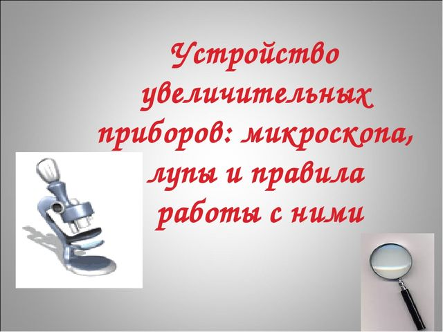 Устройство увеличительных приборов: микроскопа, лупы и правила работы с ними