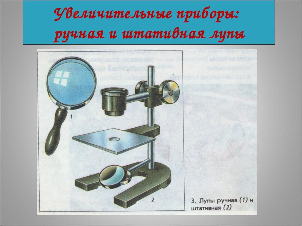 Увеличительные приборы: ручная и штативная лупы