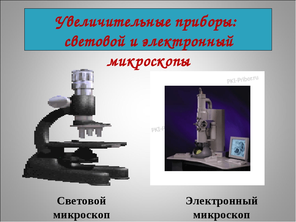 Световой микроскоп Электронный микроскоп Увеличительные приборы: световой и э...
