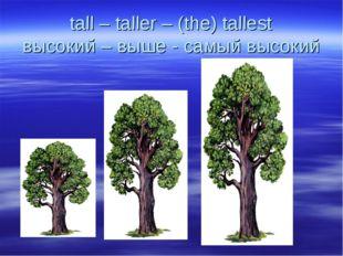 tall – taller – (the) tallest высокий – выше - самый высокий
