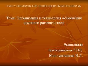 ГБПОУ «ЧЕБАРКУЛЬСКИЙ ПРОФЕССИОНАЛЬНЫЙ ТЕХНИКУМ» Тема: Организация и технологи