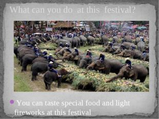 You can taste special food and light fireworks at this festival What can you
