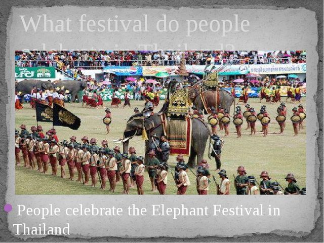 People celebrate the Elephant Festival in Thailand What festival do people ce...