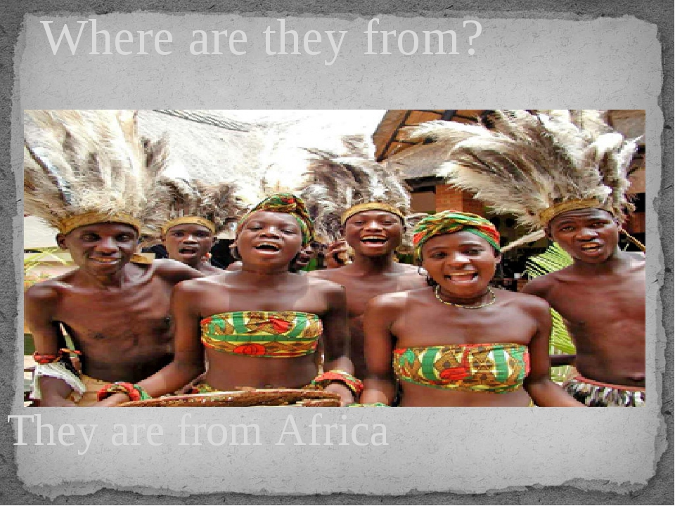 They are from Africa Where are they from?