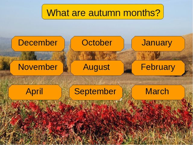 What are autumn months?