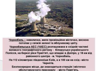 Чорнобиль – невеличке, миле провінційне містечко, весною потопає у свіжій зел
