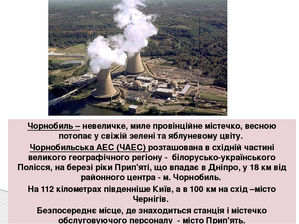 Чорнобиль – невеличке, миле провінційне містечко, весною потопає у свіжій зел...