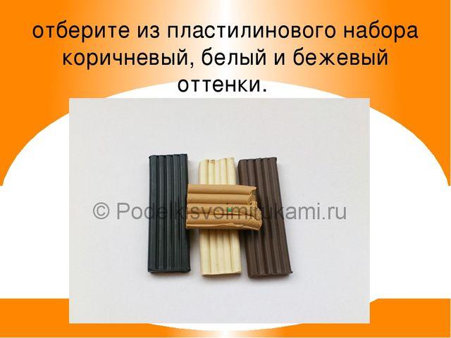 отберите из пластилинового набора коричневый, белый и бежевый оттенки.