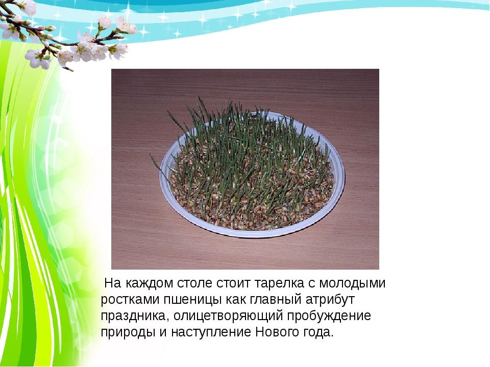 На каждом столе стоит тарелка с молодыми ростками пшеницы как главный атрибу...