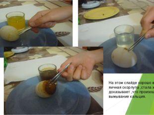 На этом слайде хорошо видно ,что яичная скорлупа ,стала хрупкой-это доказывае