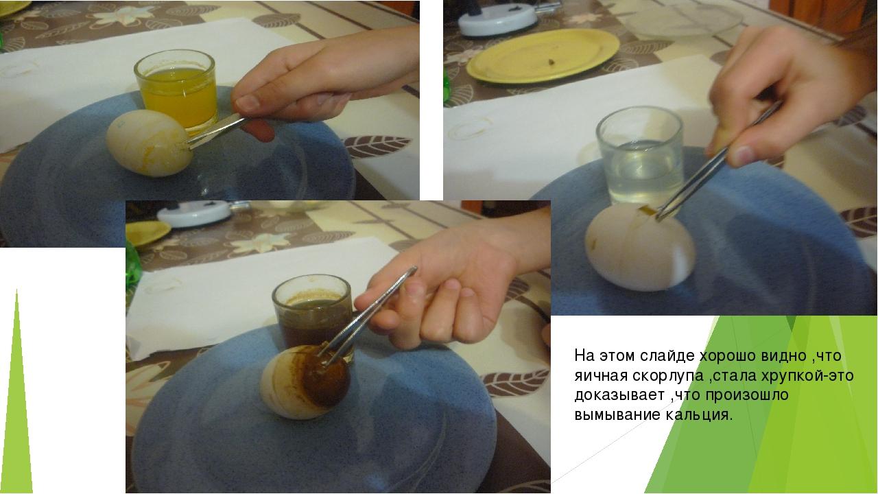 На этом слайде хорошо видно ,что яичная скорлупа ,стала хрупкой-это доказывае...