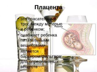 Плацента это спасательный трос между матерью и ребенком; снабжает ребенка пит