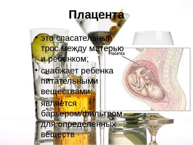 Плацента это спасательный трос между матерью и ребенком; снабжает ребенка пит...