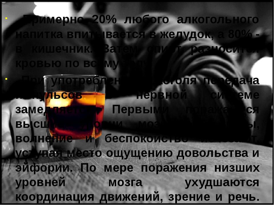 Примерно 20% любого алкогольного напитка впитывается в желудок, а 80% - в ки...