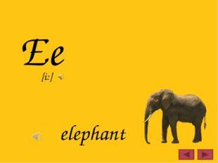 Ee elephant [i:]
