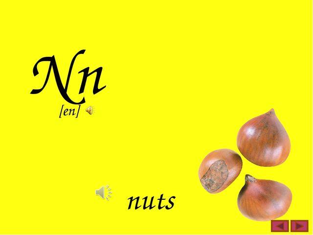 Nn nuts [en]