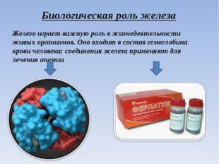 Биологическая роль железа Железо играет важную роль в жизнедеятельности живых