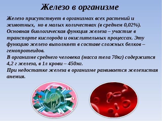 Железо в организме Железо присутствует в организмах всех растений и животных,...