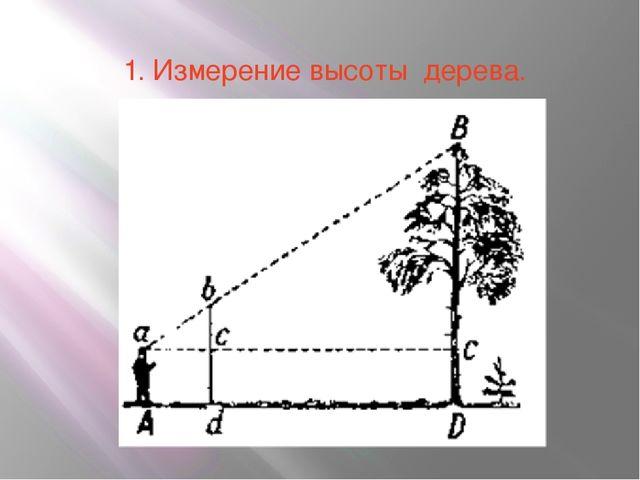 1. Измерение высоты дерева.