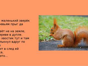 Рыжий маленький зверёк По деревьям прыг да скок. Он живёт не на земле, А на д