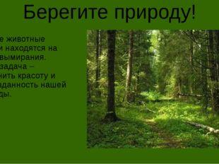 Берегите природу! Многие животные России находятся на грани вымирания. Наша з