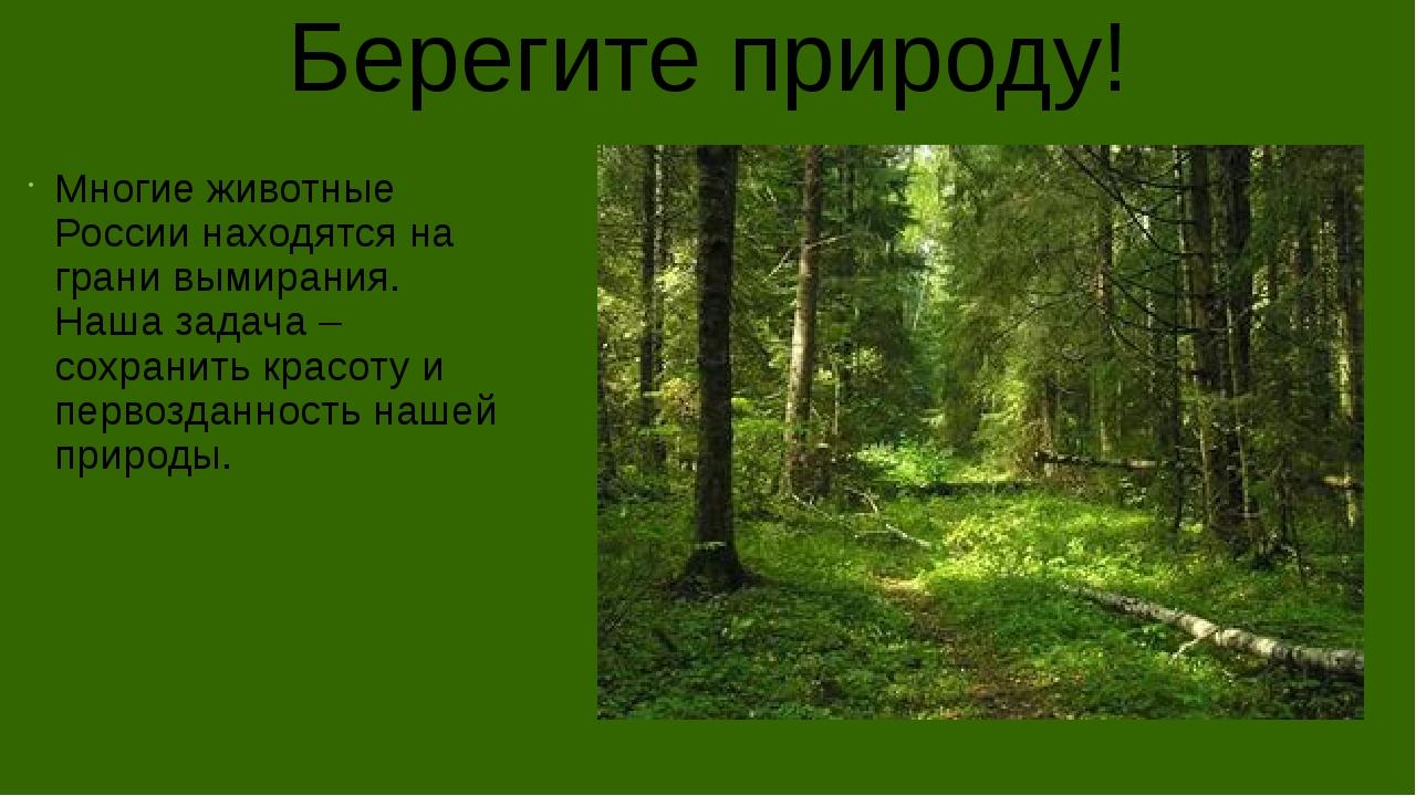Берегите природу! Многие животные России находятся на грани вымирания. Наша з...