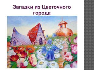 Загадки из Цветочного города