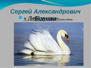 Сергей Александрович Есенин « Лебёдушка»(песня о лебедях)