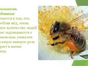 Актуальность исследования заключается в том, что, употребляя мёд, очень больш