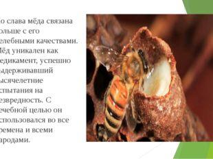 Но слава мёда связана больше с его целебными качествами. Мёд уникален как ме