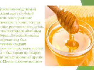 Заниматься пчеловодством на Руси начали еще с глубокой древности. Благоприятн
