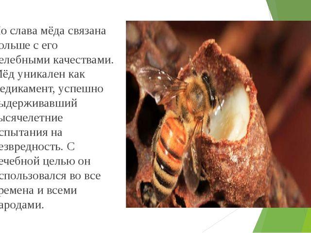 Но слава мёда связана больше с его целебными качествами. Мёд уникален как ме...