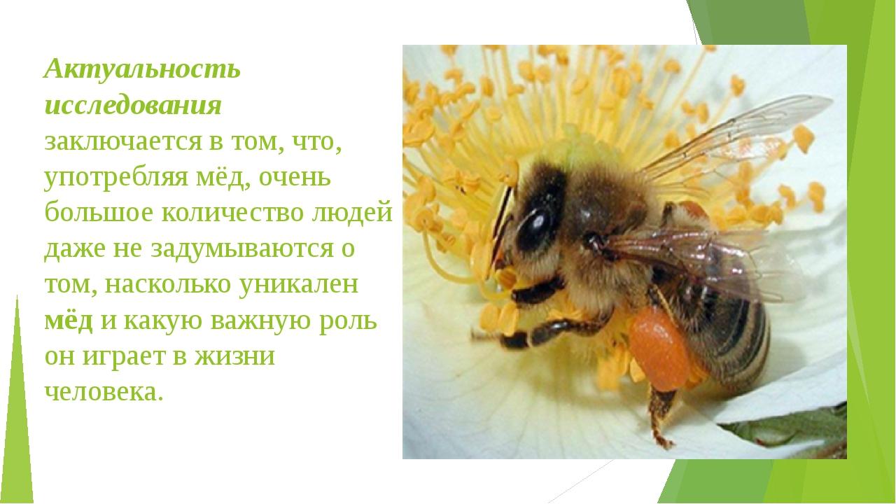 Актуальность исследования заключается в том, что, употребляя мёд, очень больш...