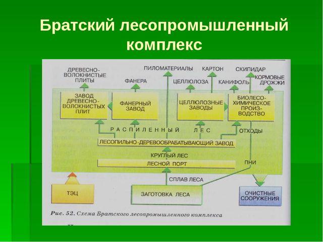 Братский лесопромышленный комплекс