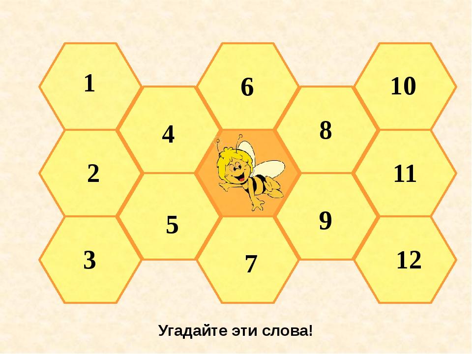 Угадайте эти слова! 2 1 3 4 5 6 7 8 9 10 11 12