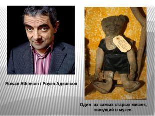 Rowan Atkinson / Роуэн Адкинсон Один из самых старых мишек, живущий в музее.