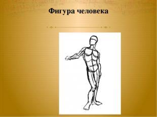 Фигура человека