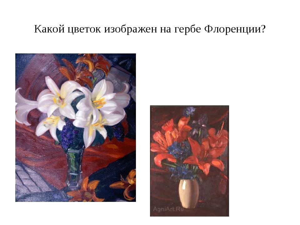 Какой цветок изображен на гербе Флоренции?