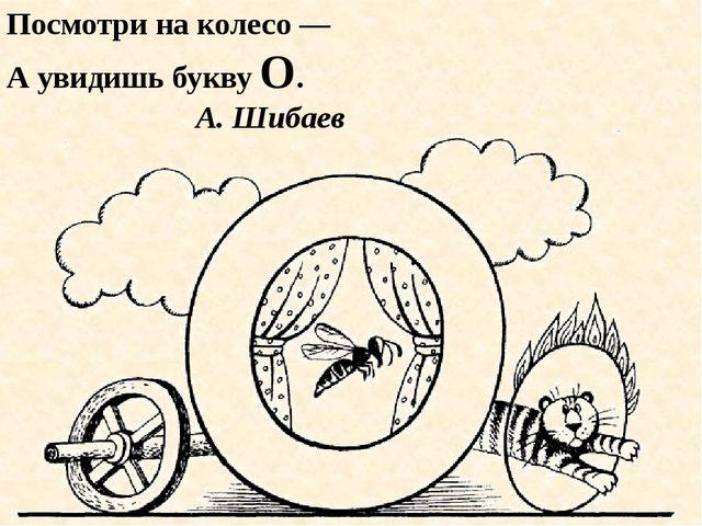 Посмотри на колесо — А увидишь букву О. А. Шибаев