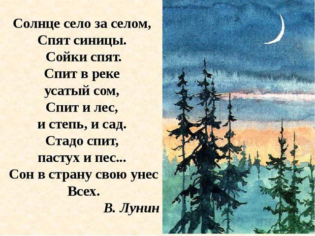 Солнце село за селом, Спят синицы. Сойки спят. Спит в реке усатый сом, Спит и...