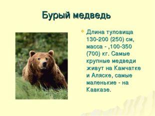 Бурый медведь Длина туловища 130-200 (250) см, масса - ,100-350 (700) кг. Сам